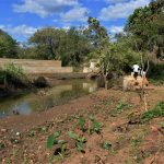 The Water Project: Masaani Community -  Farmland Near Dam