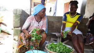 The Water Project:  Slicing Potato Leaves