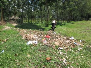 The Water Project:  Cow Snacks Near Compost Pit