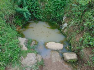 The Water Project:  Water Source From Home