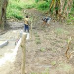 The Water Project: Bung'onye Community, Shilangu Spring -  Grass Planting