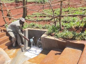 The Water Project:  Getting A Drink From The Spring