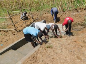 The Water Project:  Community Participates In Grass Planting