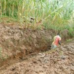The Water Project: Hirumbi Community, Khalembi Spring -  Digging Drainage Channel