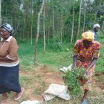 The Water Project: Shamakhokho Community, Imbai Spring -  Women Delivering Grass For Planting At The Spring Site
