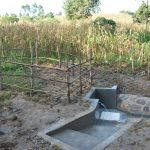 The Water Project: Sichinji Community, Kubai Spring -  Completed Kubai Spring