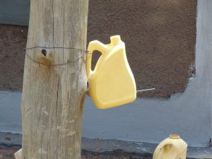 The Water Project:  Tippy Tap For Handwashing