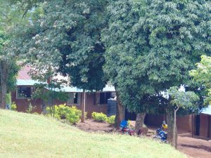 The Water Project:  Trees Line The Classroom Buildings