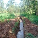 The Water Project: Shamakhokho Community, Imbai Spring -  Drainage Channel