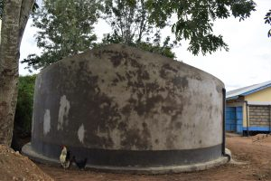 The Water Project:  Tank Cement Cures