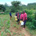 The Water Project: Jinjini Friends Primary School -  Students Going To The Spring