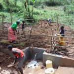 The Water Project: Bumavi Community, Joseph Njajula Spring -  Grass Planting On Top Of The Spring Box