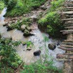 The Water Project: Mukoko Baptist Primary School -  Water Source And Risky Footbridge
