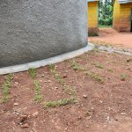 The Water Project: Friends School Mutaho Primary -  Student Health Club Members Added Some Beautification And Reduced Future Erosion By Planting Grass