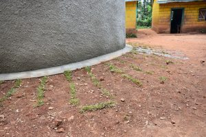 The Water Project:  Student Health Club Members Added Some Beautification And Reduced Future Erosion By Planting Grass