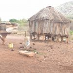 The Water Project: Kasioni Community B -  Chicken Coops