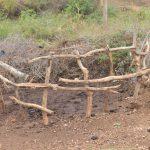 The Water Project: Nzimba Community -  Cattle Pen