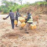The Water Project: Mbitini Community A -  Loading Up Donkeys With Water Containers