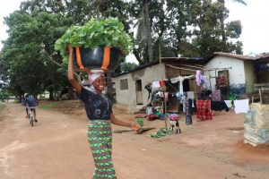 The Water Project:  Selling Potato Leaves