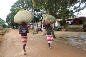 The Water Project:  Young Men Carrying Potato Leaves And Cassava Leaves On Their Heads