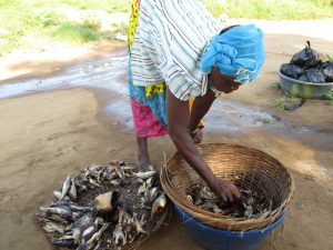 The Water Project:  Old Woman Selling Fish