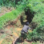 The Water Project: Munenga Community, Francis Were Spring -  Site Clearance