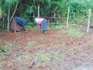 The Water Project:  Women Planting Grass Inside The Spring Box