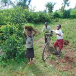 The Water Project: Munenga Community, Francis Were Spring -  Kids Help Carry Grass To Plant At The Spring