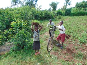 The Water Project:  Kids Help Carry Grass To Plant At The Spring