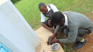 The Water Project:  Pupils Crush Charcoal As Toothpaste Replacement For Toothbrushing Practical