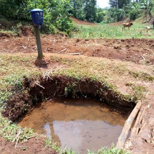 The Water Project:  Unprotected Atondola Spring