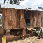 The Water Project: Nduumoni Community -  Grain Storage And Drying