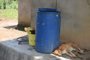 The Water Project:  Water Storage Containers And Their Guard Dog