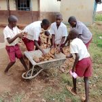 The Water Project: Mulwanda Mixed Primary School -  Pupils Help Collect Stones For Rain Tank Foundation