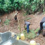 The Water Project: Kisasi Community, Edward Sabwa Spring -  Grass Planting