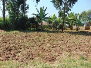 The Water Project:  School Farm