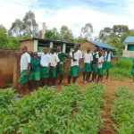 The Water Project: Galona Primary School -  Boys At Their Latrines