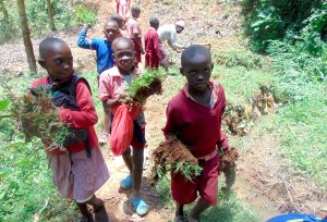 The Water Project:  Kids Carry Grass To Plant