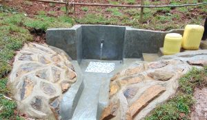 The Water Project:  Completed Edward Sabwa Spring