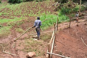 The Water Project:  Artisan Hauls A Large Branch For The Fencing