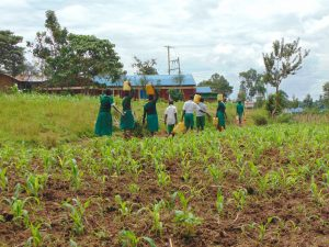 The Water Project:  Pupils Carrying Water