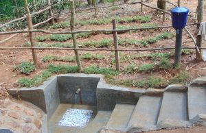 The Water Project:  Clean Water Flows At Murumba Spring