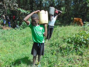 The Water Project:  Delivering Local Materials