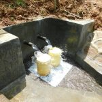The Water Project: Malimali Community, Shamala Spring -  Clean Water Flows