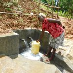 The Water Project: Malimali Community, Shamala Spring -  Easy To Fetch Water Now