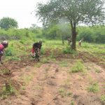 The Water Project: Kathamba ngii Community C -  Working On The Farm