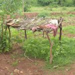 The Water Project: Kathamba ngii Community B -  Dishrack