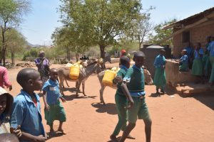 The Water Project:  Donkeys With Water Containers