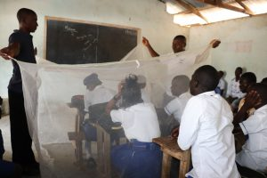 The Water Project:  Malaria Bednet Lesson