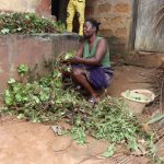 The Water Project: Lungi, Thomossoh, #24 Thullah Street -  Woman Cutting Potato Leaves Stem Fot Plating